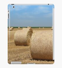 straw bales agriculture industry iPad Case/Skin