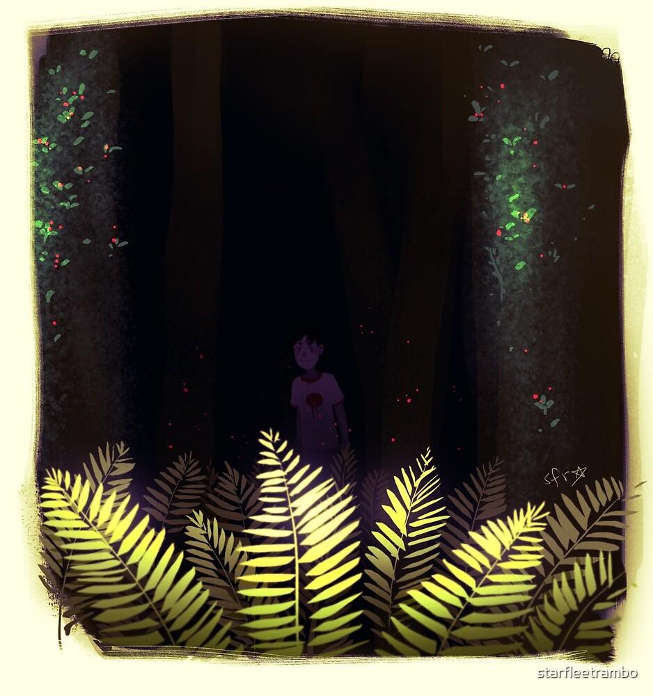 Beware the Boy in the Forest by starfleetrambo