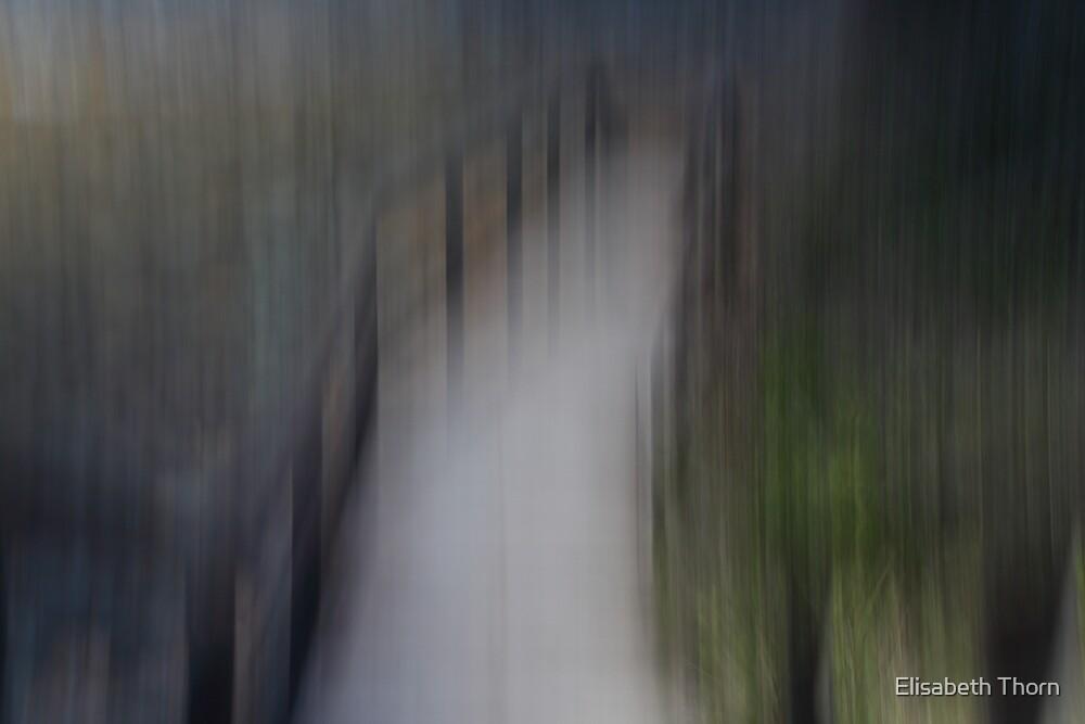 Boardwalk to the beach. by Elisabeth Thorn