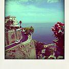 Sorrento - Amalfi Coast - Italy by anth0888