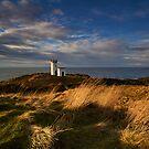 Elie Lighthouse by Jeanie