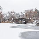 Gapstow Bridge by Nick Jermy