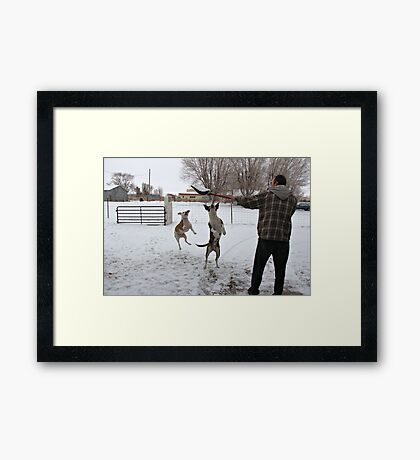 Buster and Sweetie Playing with dad and the snow~  Framed Print