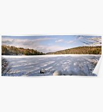 Afternoon Shadows at Spectacle Pond Poster