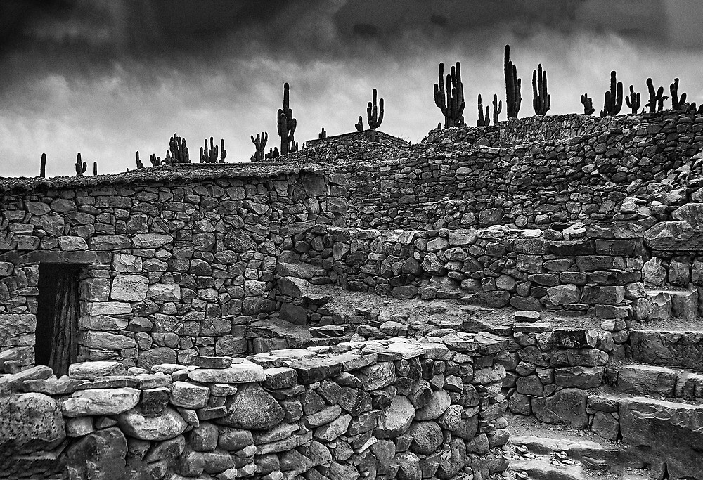 The Stone House - monochrome by photograham