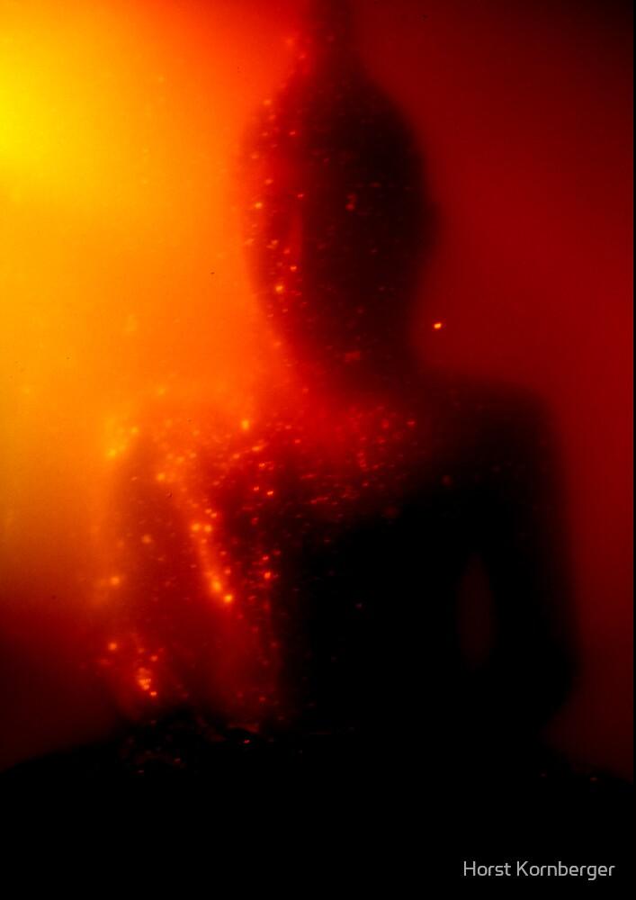 Buddha in Honey 07  by Horst Kornberger