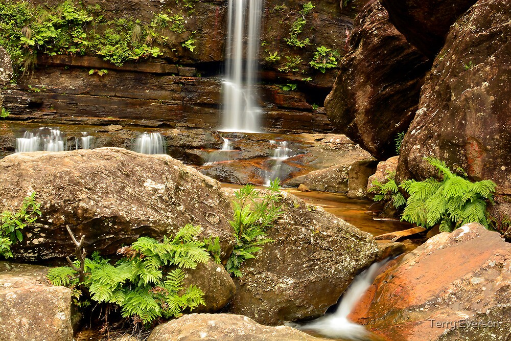 Base Of The Falls #1 by Terry Everson
