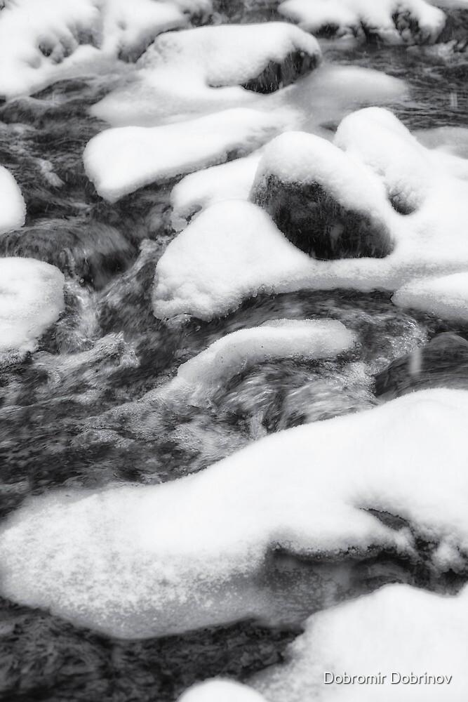 Winter river by Dobromir Dobrinov