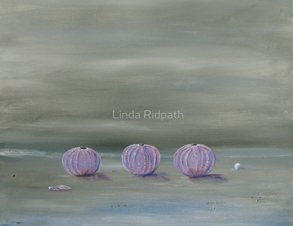 Sea treasures by Linda Ridpath