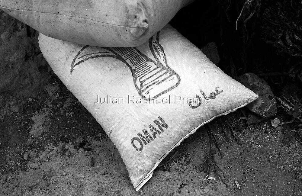 Oman by Julian Raphael Prante