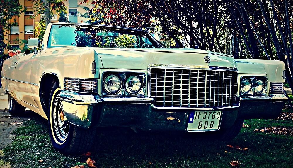 Car by pedrogalvez