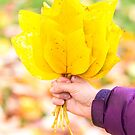An autumn bouquet for you by Zoe Power