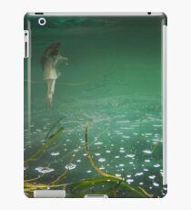 Underwater iPad Case/Skin