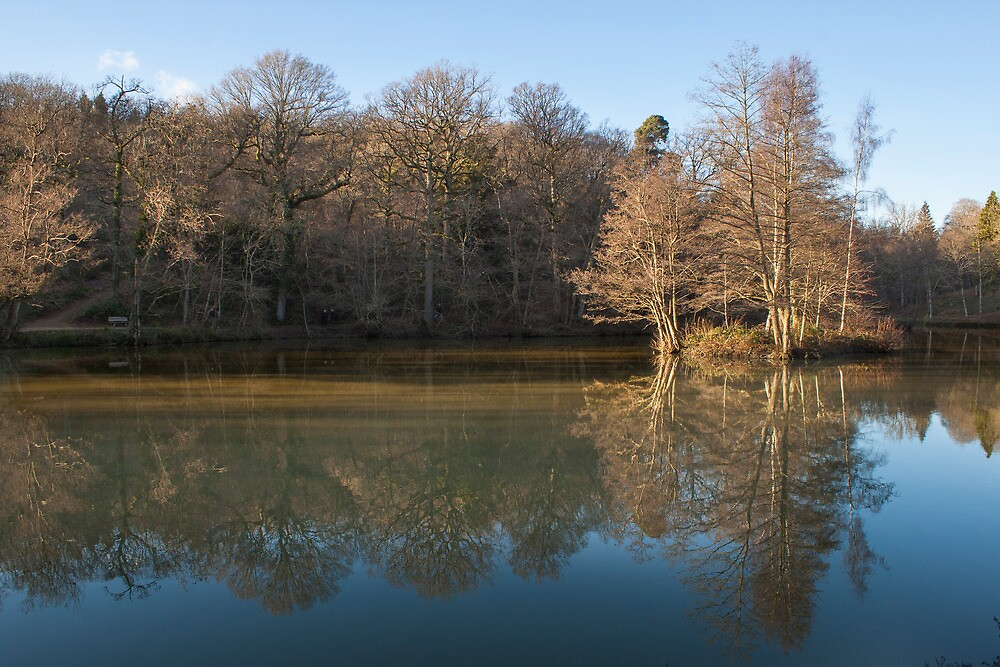 Lake at Wakehurst place by janwyl