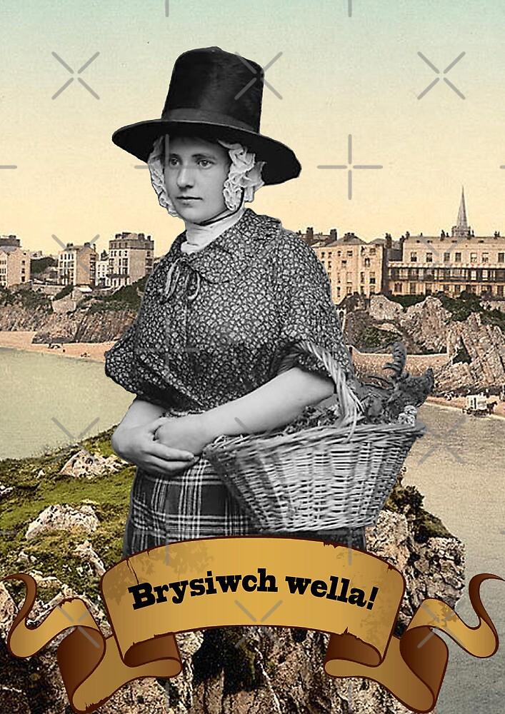 Brysiwch wella! by Hywel Edwards