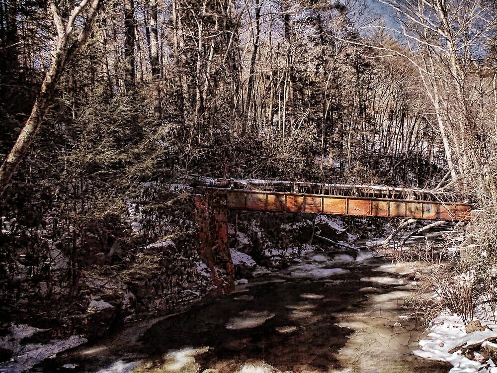 Log Flume Crossing by PineSinger
