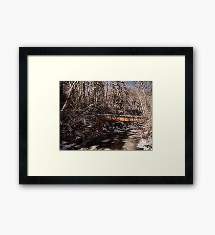 Log Flume Crossing Framed Print