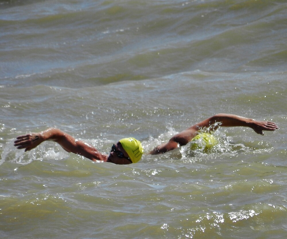 Noth sea swimmers by TOFFS