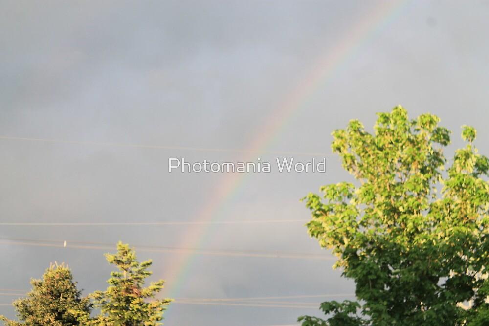 Rainbow by Katherine Hartlef