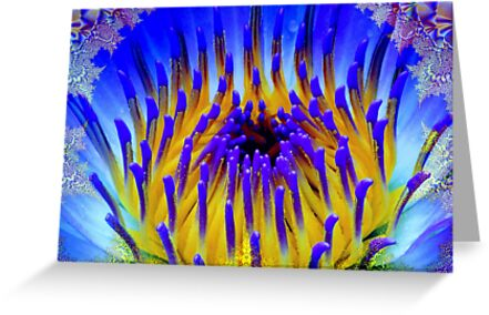 Flower of Peace by Brian Exton