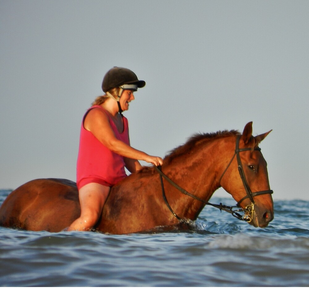 Horse having a swim by TOFFS