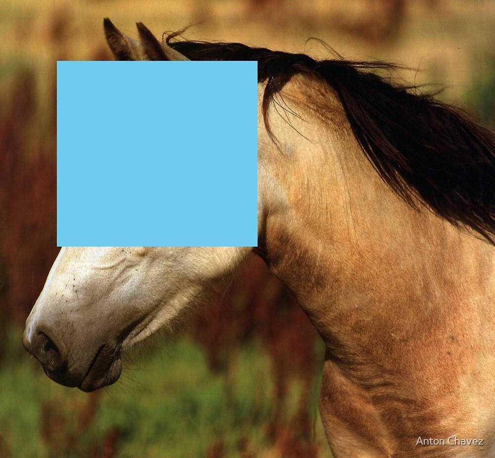 Horse4 by Anton Chavez
