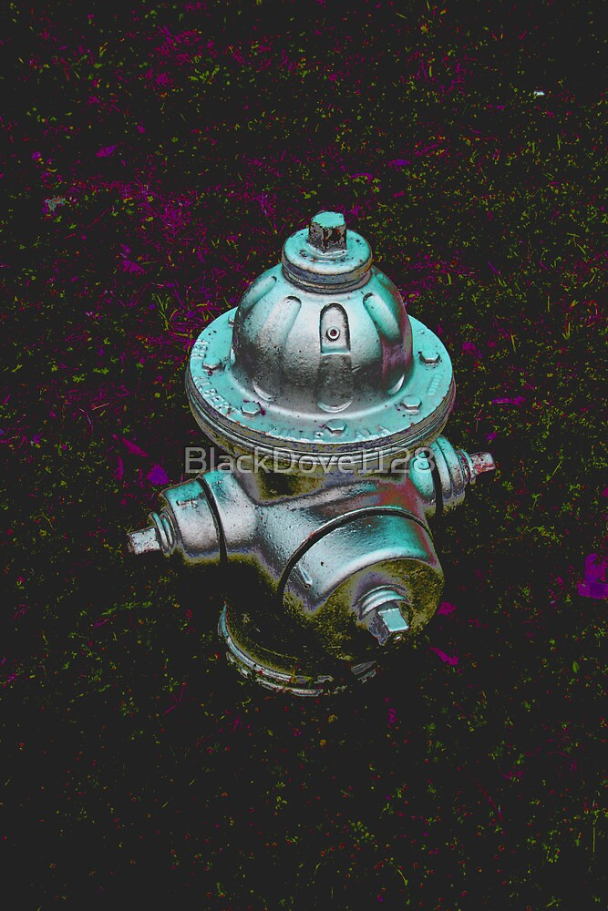 """""""Hydrant"""" by BlackDove1128"""