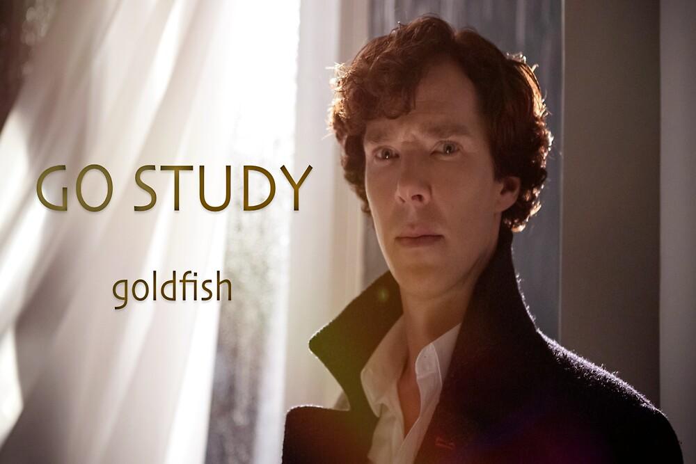 Go Study-Sherlock Holmes v3 by kinderberry
