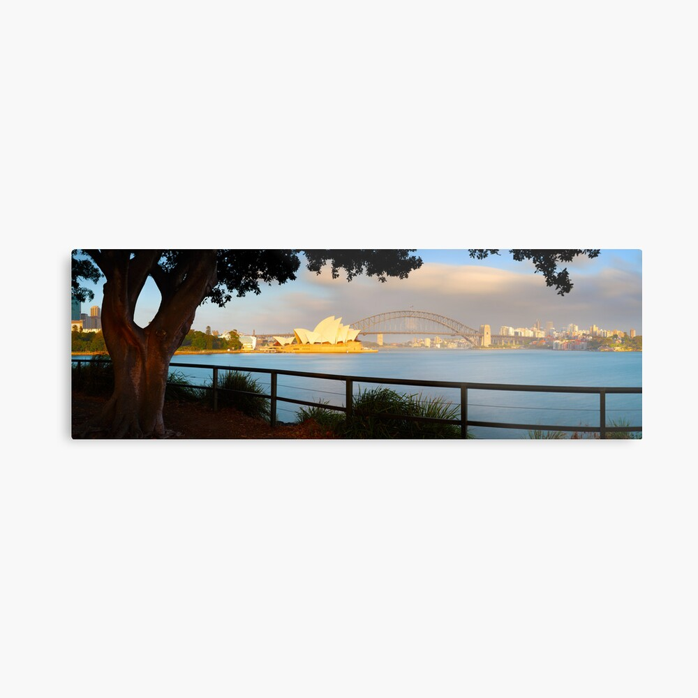 One Morning in Sydney, New South Wales, Australia Metal Print