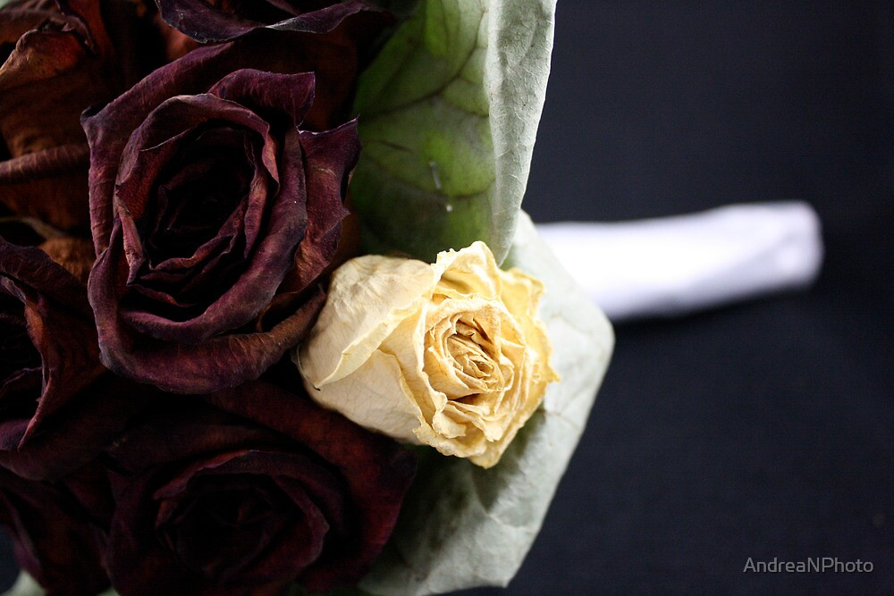 Dried Bouquet 3 by AndreaNPhoto