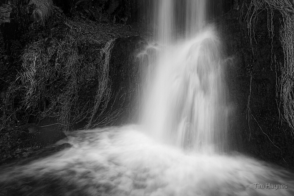 Wee Waterfall by Tim Haynes