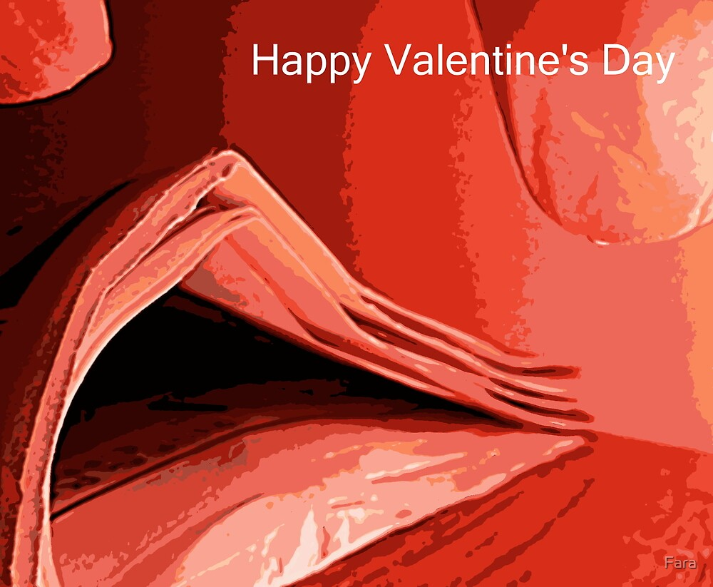 Happy Valentine's Day by Fara
