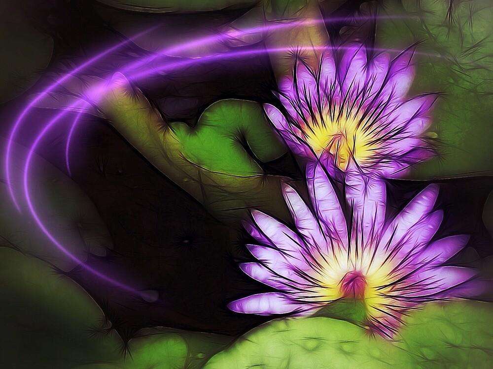Twin lilies in purple by DerekEntwistle