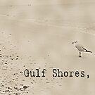Beach Bird at Gulf Shores by sacredmoments