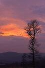 Smoky Sunset Series by NatureGreeting Cards ©ccwri