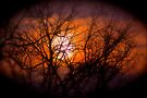 Smoky Sunset  Series by NatureGreeting Cards ©ccwri