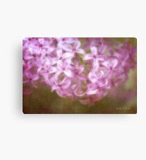 Painted Lilacs Canvas Print