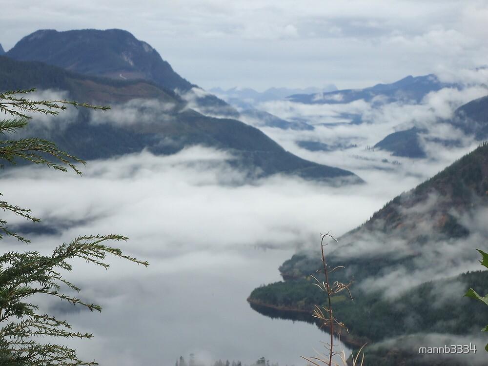 Misty Mountain Wilderness by mannb3334