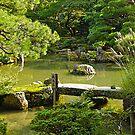 Garden Pond at the Silver Pavilion, Kyoto, Japan. by johnrf