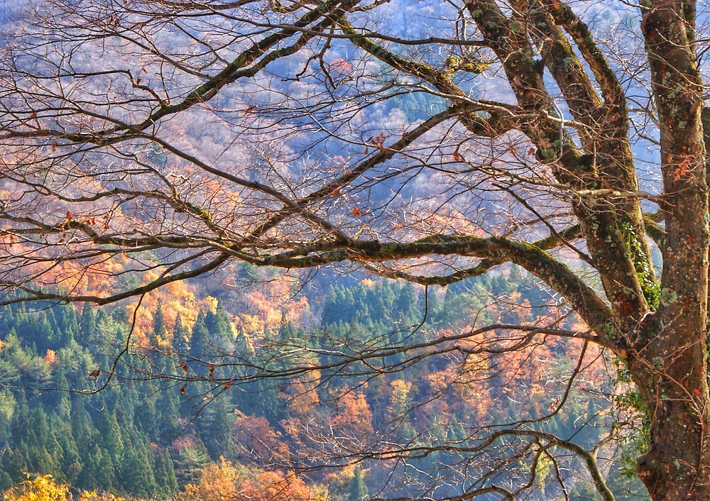 Fall colors in the Japanese alps by DerekEntwistle