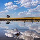 Badjaling Salt Lake by Matt Fricker