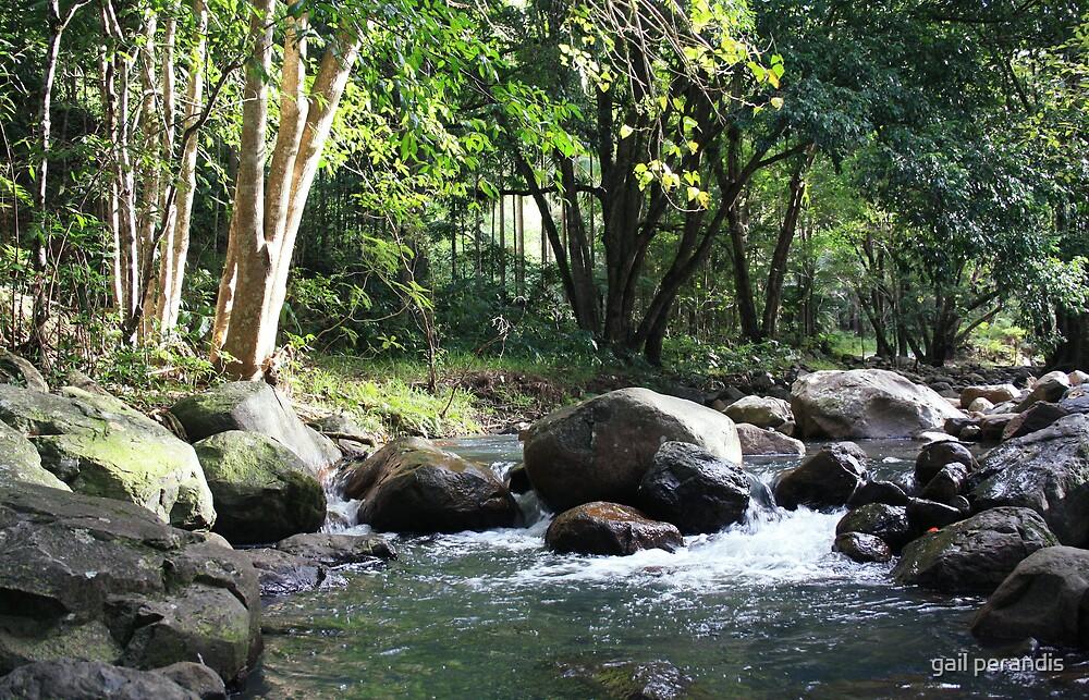 Korrumbyn Creek NSW by gail woodbury