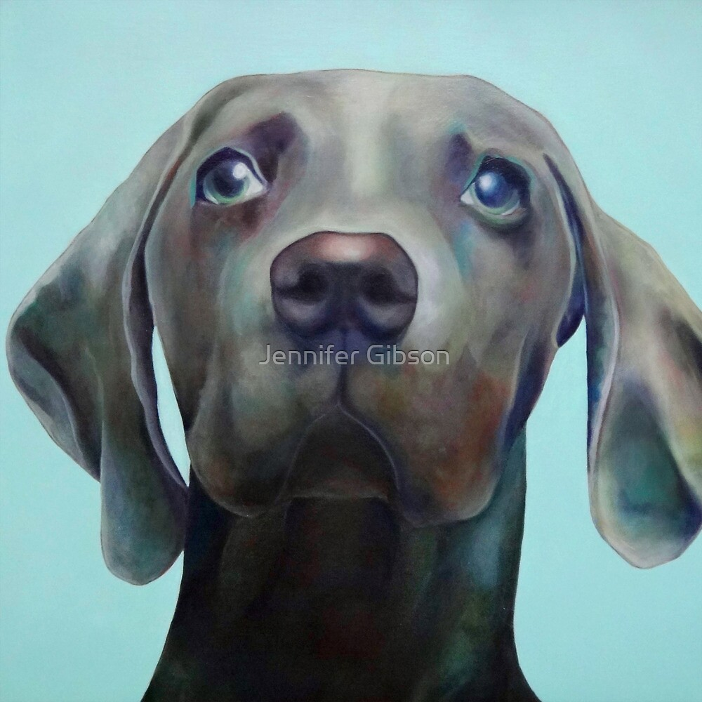 Little Weimaraner Looking Up by Jennifer Gibson