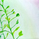 Green Vines by Jennifer Gibson