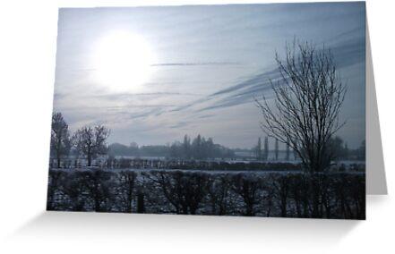 winter sun by bibblesbunnies