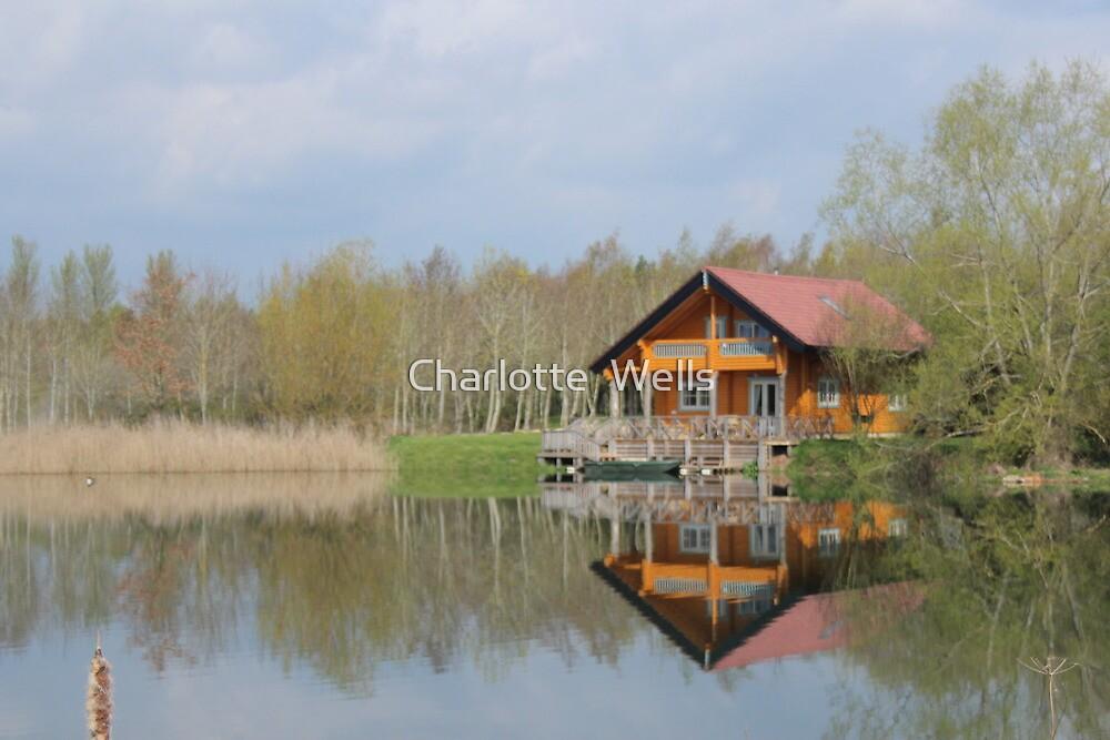 Log Cabin  by Charlotte  Wells