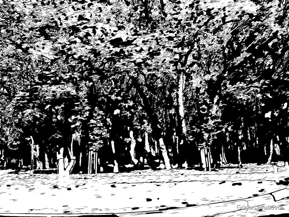 Manifestations of Eternity, 1-59 by Grigori Grabovoi