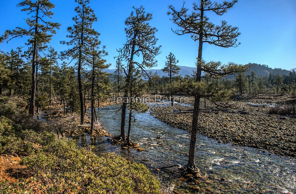 trekking along the Illinois river HDR by Jeannie Peters
