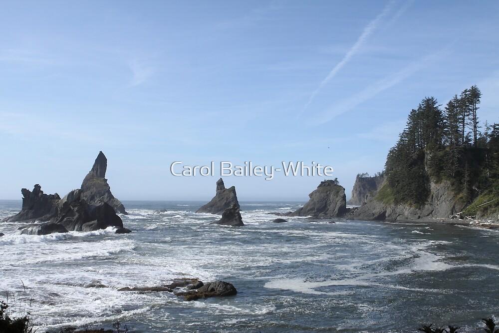 Shi Shi Beach by Carol Bailey-White