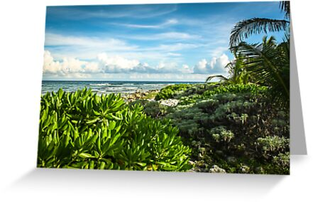 Mexican Seascape by Made By Maryann Photography
